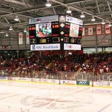Hockey arena digital sports scoreboard